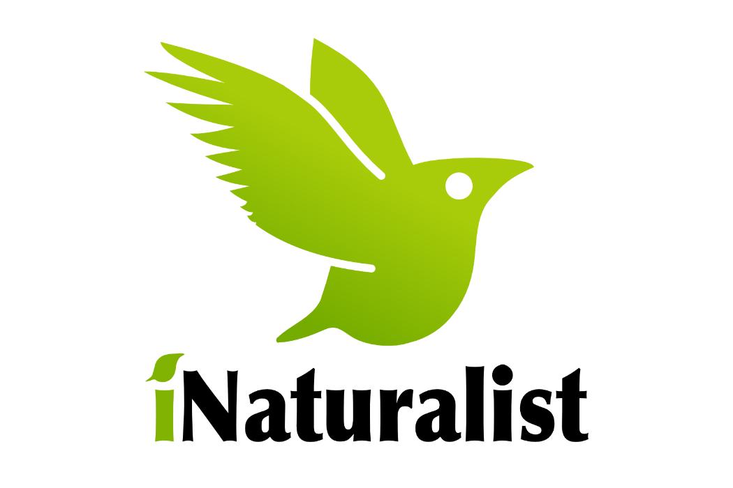 iNaturalist la app para descubrir y conocer la biodiversidad