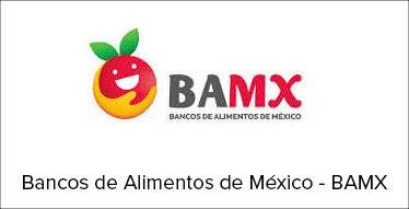 bancos de alimentos de méxico - bamx