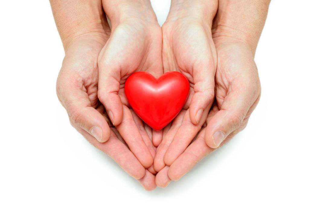 D a nacional de donaci n y trasplante de rganos y tejidos - Alfombras que se pueden fregar ...