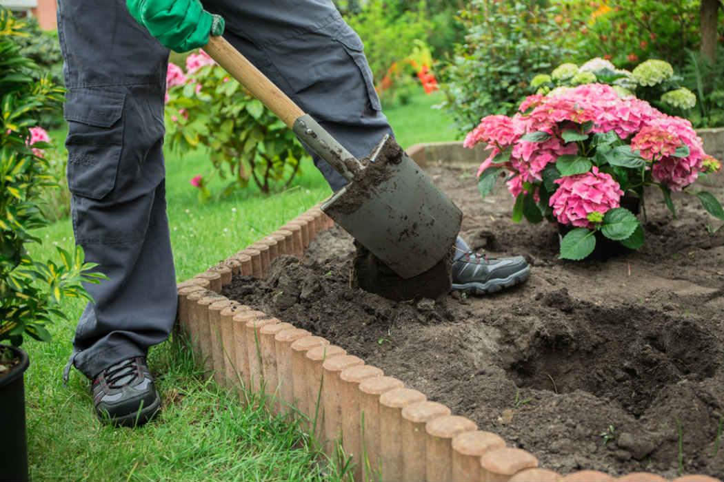 Jardinero a gran escala capac tate para el empleo for Jardinero en casa